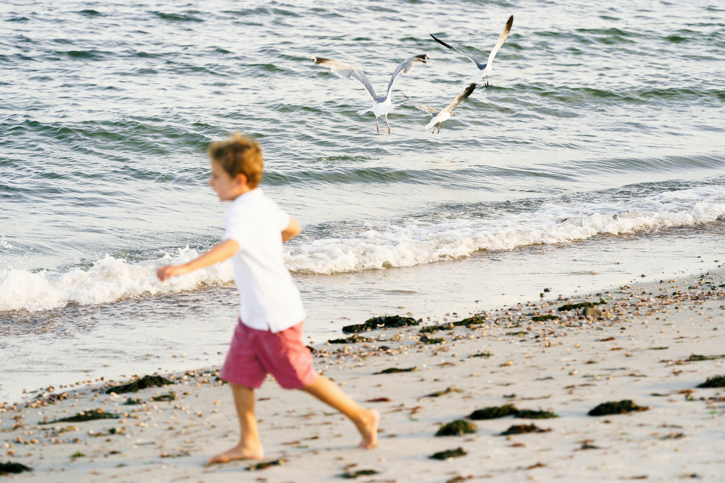 Cape Cod family sessions